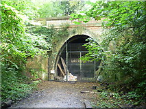 TQ3472 : Entrance to Crescent Wood Tunnel, Sydenham Hill Woods by Marathon
