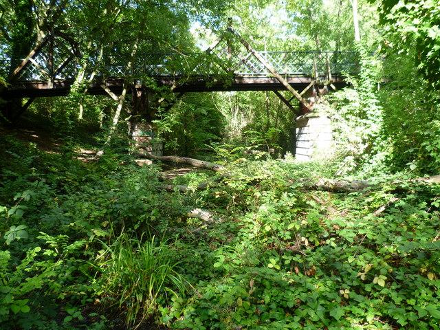 Pissarro's bridge in Sydenham Hill Woods