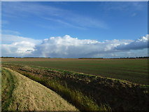 TF3009 : Stormy sky and remote fenland fields on North Fen by Richard Humphrey