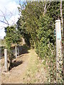 TM2643 : Footpath to Ipswich Road by Geographer