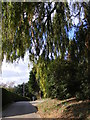 TM2642 : Jacksons Road, Newbourne by Geographer