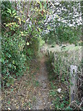 SE1614 : Footpath, Broken Cross, Almondbury by Samantha Waddington