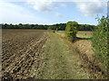TL6656 : Footpath by Keith Evans