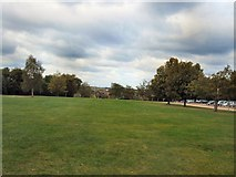 SU9850 : Green near Guildford Cathedral by Paul Gillett