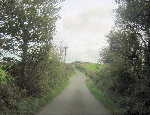 Tregele Lane towards The Firs