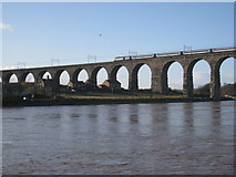 NT9953 : Royal Border Bridge by Jonathan Thacker