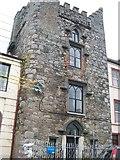 N9690 : Hatch's Castle, Ardee by Eric Jones