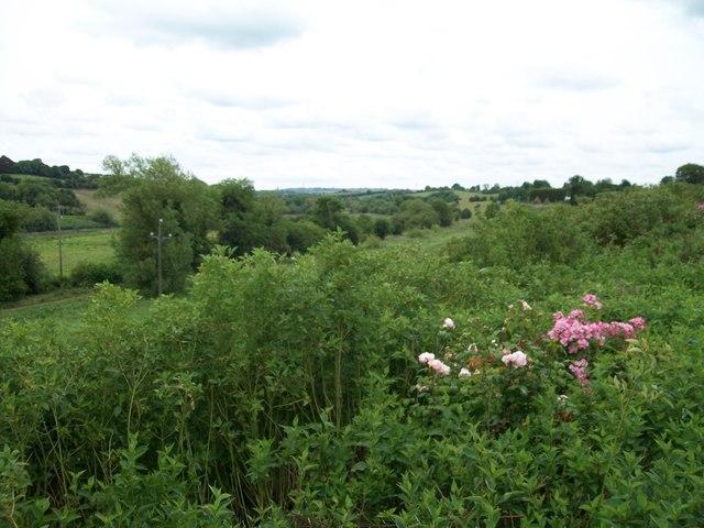 View downstream along the Boyne Valley from near the Slane Bridge