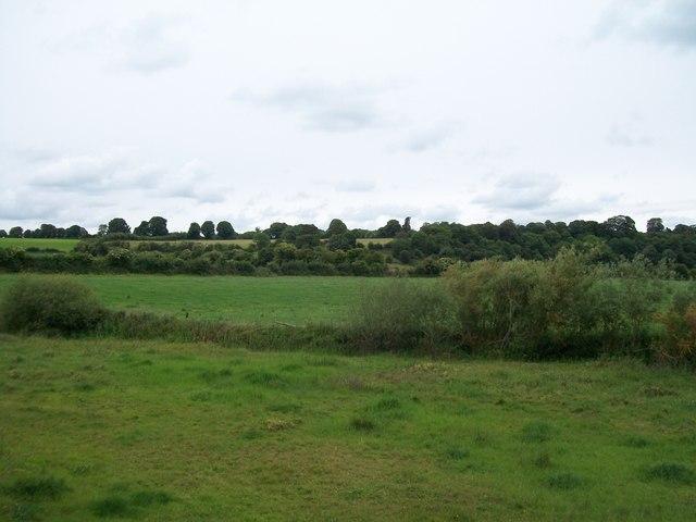 Farmland on the north bank of the Boyne
