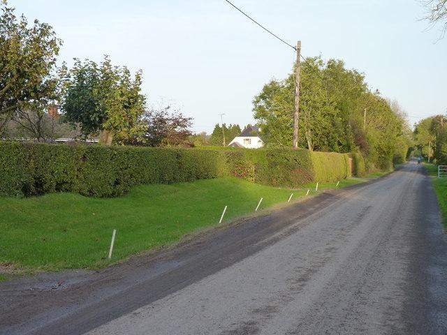 The road through Grange