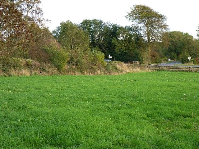 Field near Ambrose Bridge