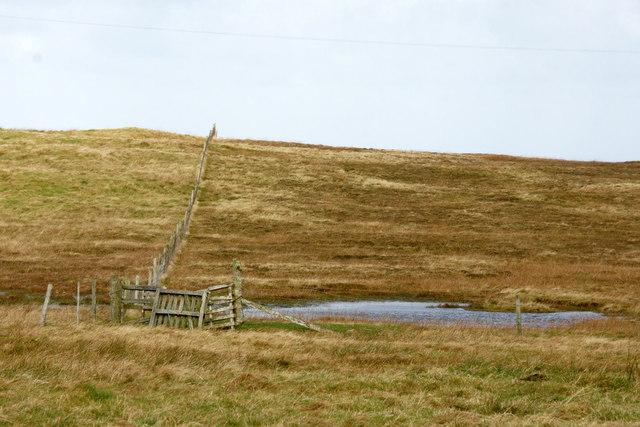 Fence on Engni Field, near Gloup