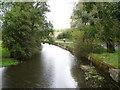 SU0425 : River Ebble, Broad Chalke - 4 by Maigheach-gheal
