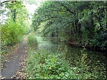 SK3353 : The Cromford Canal and towpath by Graham Hogg