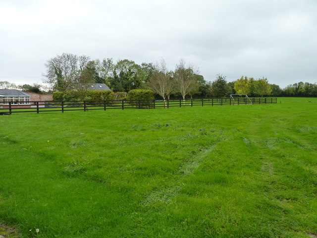 Track in long grass