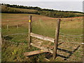TQ4061 : Stile near Ashmore Farm by David Anstiss