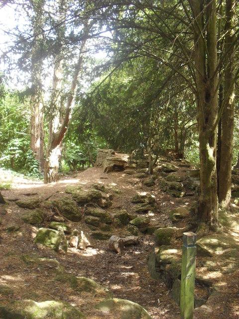 Jarn Mound wild garden