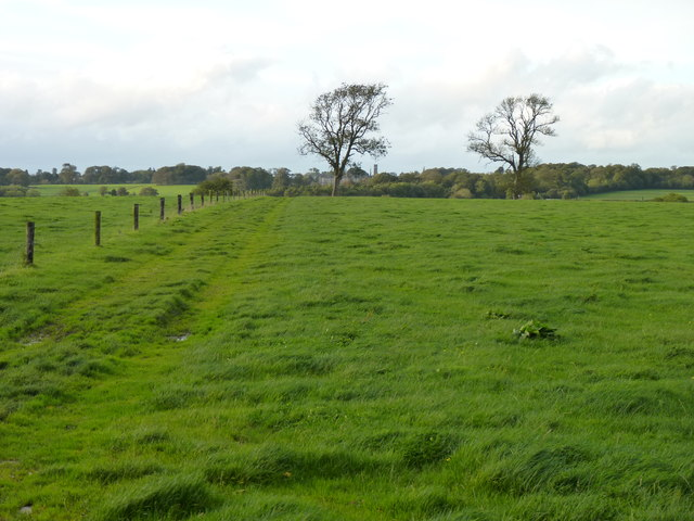 Grassed-over field track