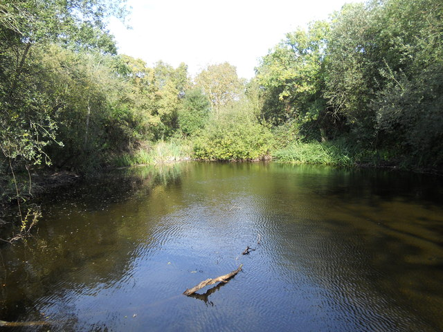Pond on Brick Fields Cranham