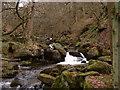 SK2579 : Burbage Brook by JThomas