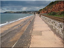 SX9777 : The Dawlish sea wall by Philip Halling