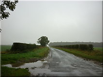 SE8947 : Kipling Cotes Race Course follows this road by Ian S