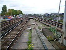 TQ2775 : A multiplicity of lines at Clapham Junction by Marathon