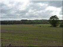 N9473 : Overlooking Boyne valley by James Allan