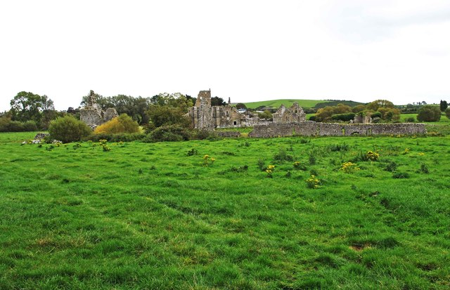 Looking towards the ruins of Athassel Abbey, near Lagganstown