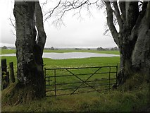 H5472 : Newly formed lake, Bracky by Kenneth  Allen