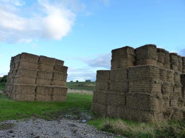 Agricultural castles
