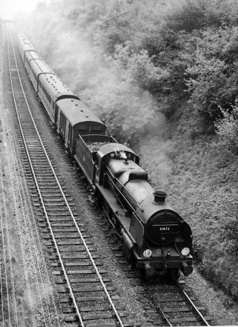 Reading - Redhill train near Gomshall & Shere