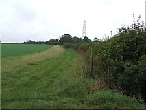 TL9853 : Footpath And Mast by Keith Evans
