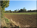 SP5359 : Upper Catesby Farmland by Ian Rob