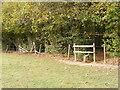 SO9381 : Path to Hagley Hill Farm by Gordon Griffiths