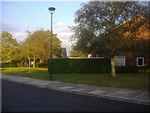 TQ1672 : Riverside Drive, Ham by David Howard