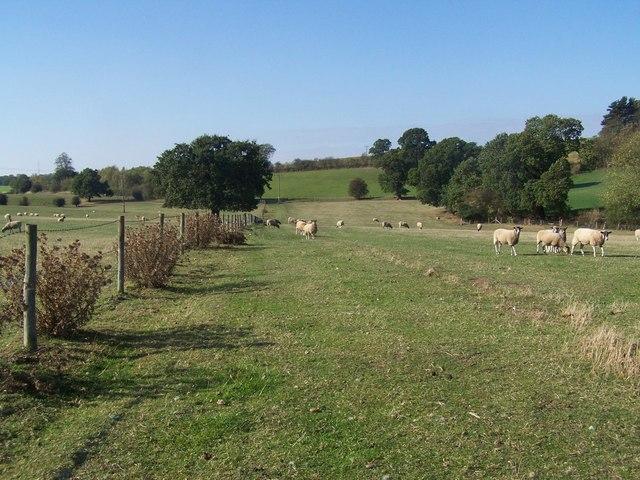 Footpath Near Hints Farm