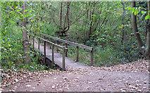 TQ5781 : Bridge between Oak and Ash by Roger Jones