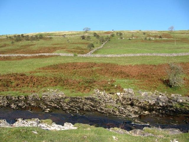 Field boundaries in Langstrothdale