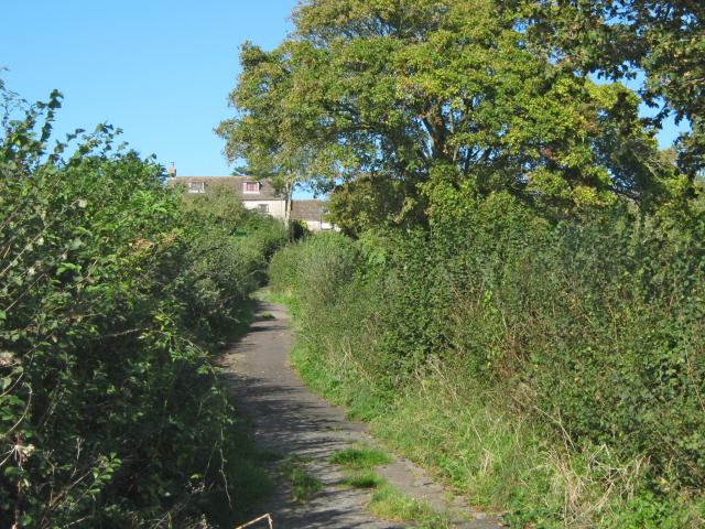 Dagg's Lane, Westhay