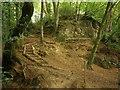 SX8078 : Path, Parke by Derek Harper