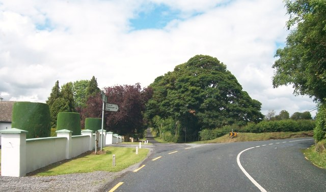 Bend in the R164 at Rathstephen