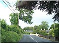 N7384 : Houses along the R164 between Rathstephen and Carrickspringan by Eric Jones