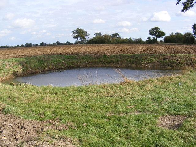 Pond off Cratfield Lane