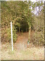 TM3074 : Footpath to Manse Lane by Adrian Cable
