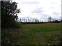 TM3074 : Footpath to Cratfield Lane by Adrian Cable