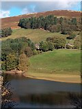 SK1789 : View across Ladybower to Old House and Jubilee Cottages by Neil Theasby