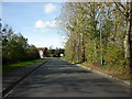NZ4915 : Sandy Flatts Lane by Ian S