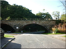 NZ7805 : The rail bridge at Glaisdale by Ian S