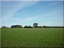SE8565 : Wharram Grange Farm by Ian S